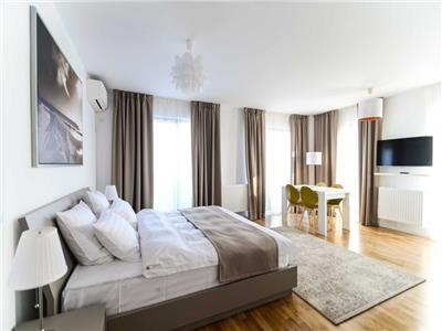 Apartament 1 camera, mobilat,  utilat,  zona Iulius.